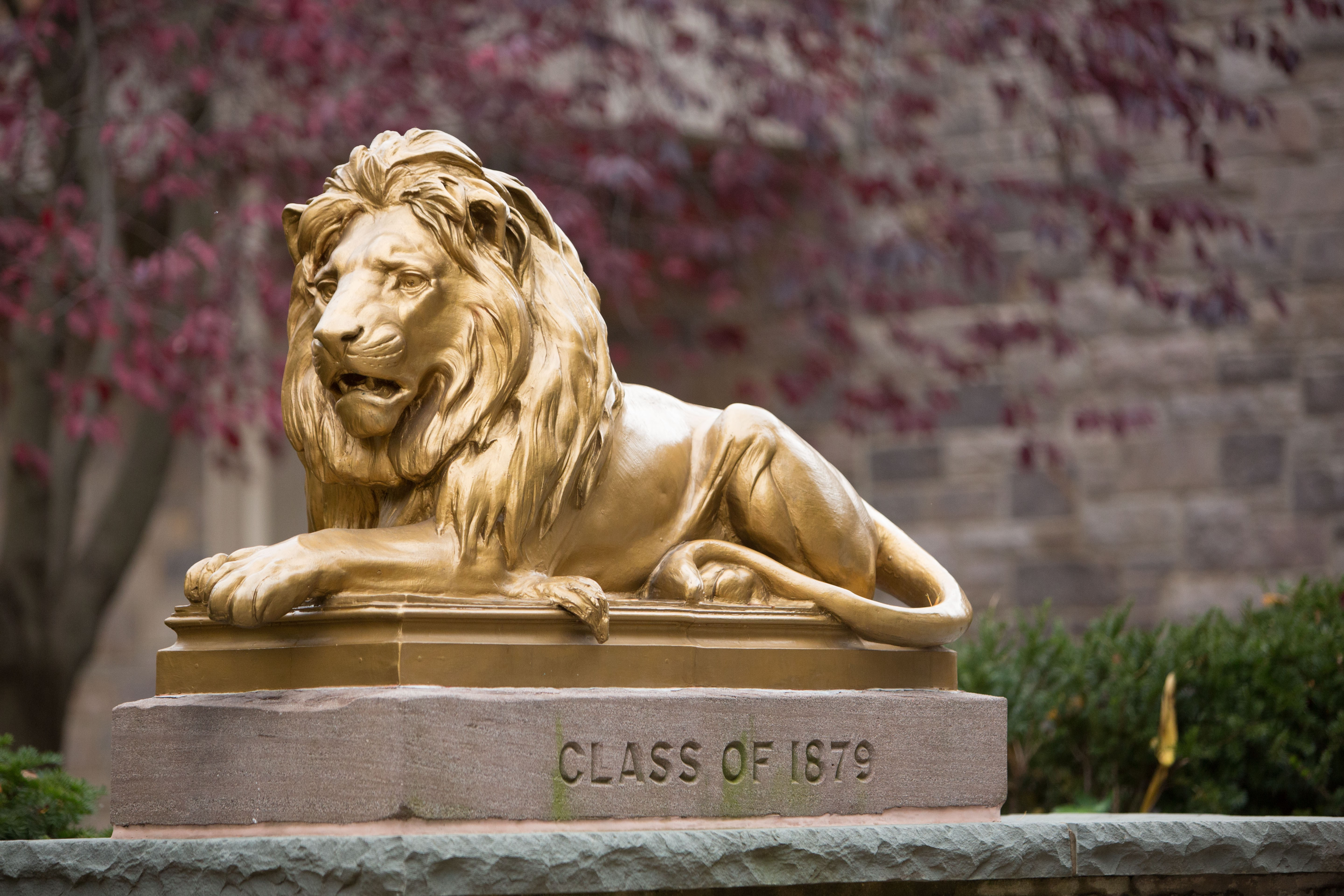 Class of 1879 lions